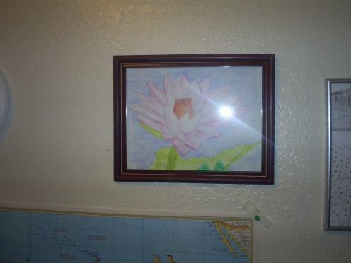 My drawing of a Hawaiian water lilly. Drawing by Sweetiepie.