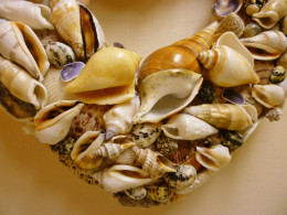 Closeup of shells layered onto the seashell wreath.