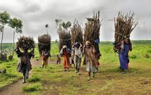 African Social Problem