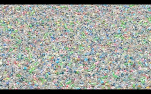 Plastic does not biodegrade.  In most cases, it doesn't recycle either, yet, we manufacture more and more on a daily basis.