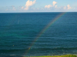 Analogy from a Rainbow