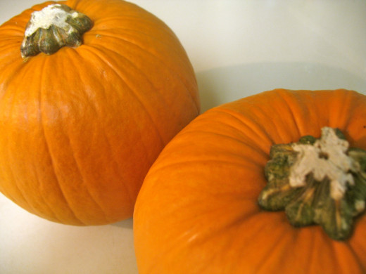 Choose fresh pie pumpkins that are heavy for their size