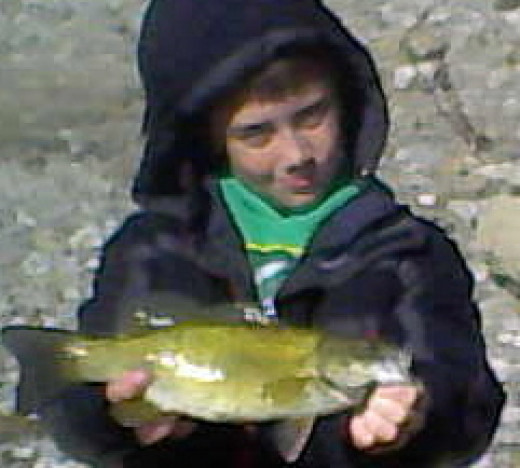 Ohio River smallmouth bass fight with the spirit  of the river where they live.