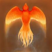 HLPhoenix profile image