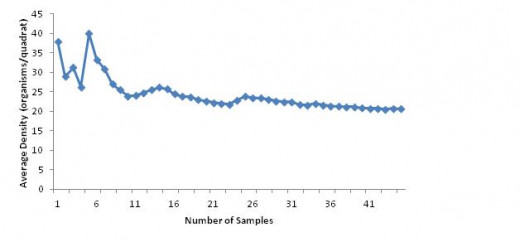 Figure 1. Average density of L. littorea as sample size increases