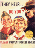 Smokey with scouts