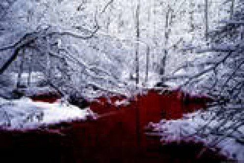 River of Blood in the Winter