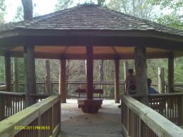 The Bird Nest Tree House front angle