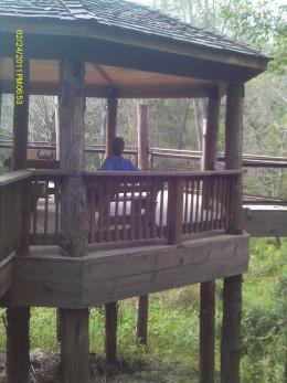 Tree house, side angle
