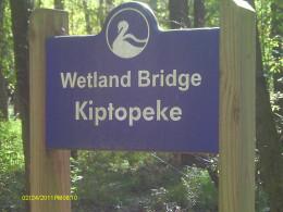 A bridge overlooking the wetlands