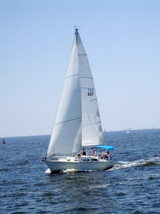 Sailboat Out at Sea