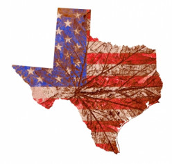 What Will Happen if Texas Secedes? OR Why the Rich Get Richer
