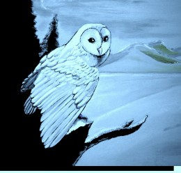 Brother owl greets the moon friend