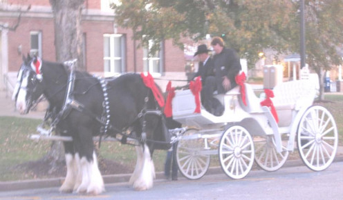 Ozark, MO, gives carriage rides around the Square on Black Friday.  A quaint way to take customers to local shops.