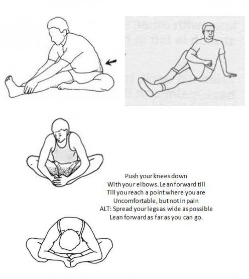 Seated Leg, Torso, and Groin Stretchs