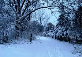 Emotional Weather Changes in Winter