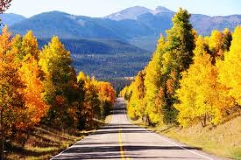 Emotional Weather Changes in Fall