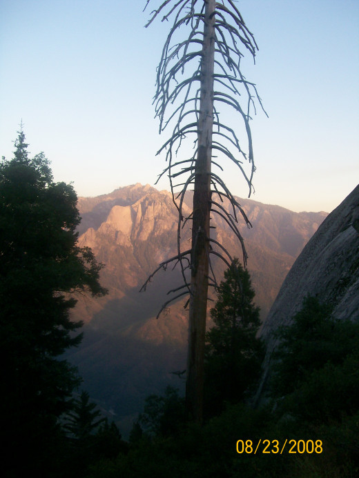 The view of the canyon when we were walking up Moro Rock.