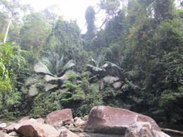 While trekking..