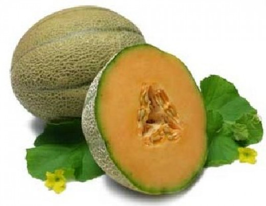 Beautiful cantalope!  Mine were not this pretty