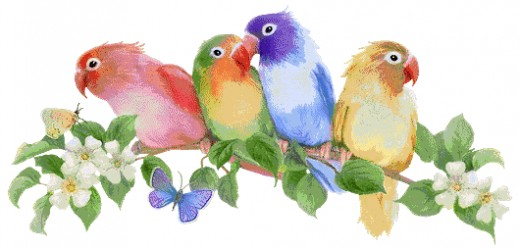 http://i280.photobucket.com/albums/kk188/ Birds