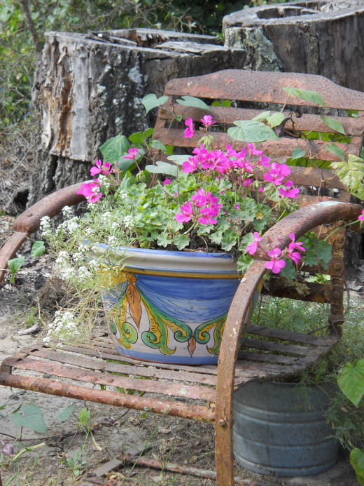 Antique chair used as flower pot holder.