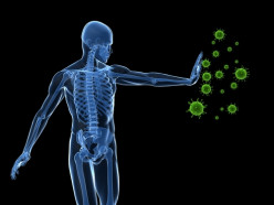 How to Get a Stronger Immune System