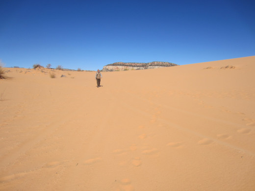 Lonely figure in middle of Utah's Coral Pink Sand Dunes State Park