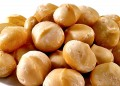 Health Benefits Macadamia Nuts, Nutrition Facts and Culinary Uses