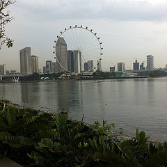 A view of Marina Bay from the outdoor gardens