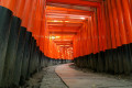 The Fushimi Inari Taisha Shrine in Kyoto, Japan