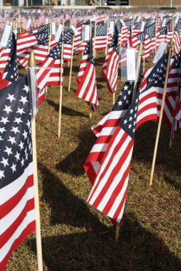 Smaller flags for Veterans Day that were purchased by family and friends for veterans.