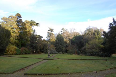 The Wee Garden