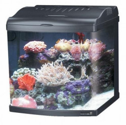 24 Gallon JBJ Nano Cube Aquarium Review