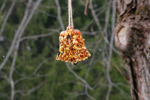 Hang your cookie cutter bird feeders in the yard and enjoy watching your feathered friends!