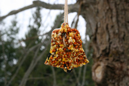 Hang the bird feeder outside and watch the birds fly in to enjoy a nice dinner!