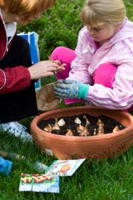 Planting beautiful bulbs should be a family activity. Pots of plants are a lovely way to introduce children to the joys of the garden.