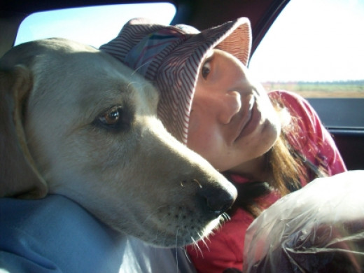 Maya rides in the cargo area of the SUV on a road trip from Kansas to Texas.