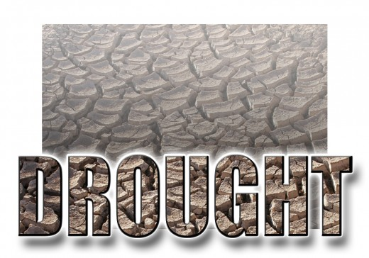 Drought in America covered over 2/3 of the US.