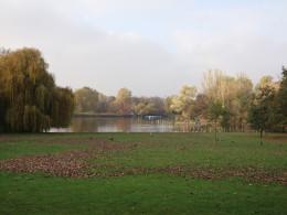 The Central Lake, Regents Park, London
