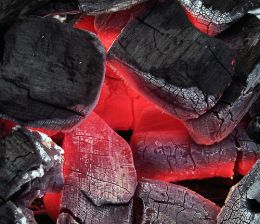 Combustion of Charcoal