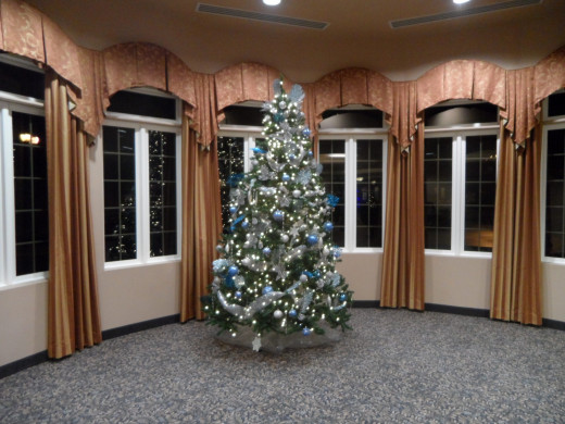 The Tree in our Main Party Room