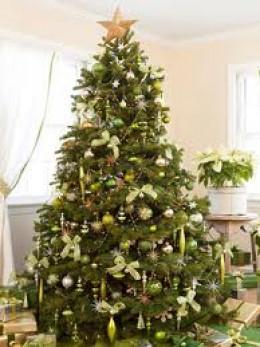 The Bible on Christmas Trees