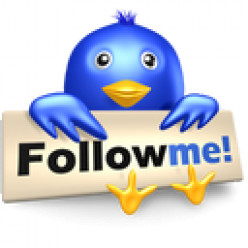 How to Get 200 New Twitter Followers Today.