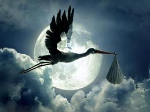 The stork came that night.