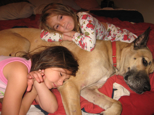Lexi and Audrie have their own personal guard dog to keep away nightmares.