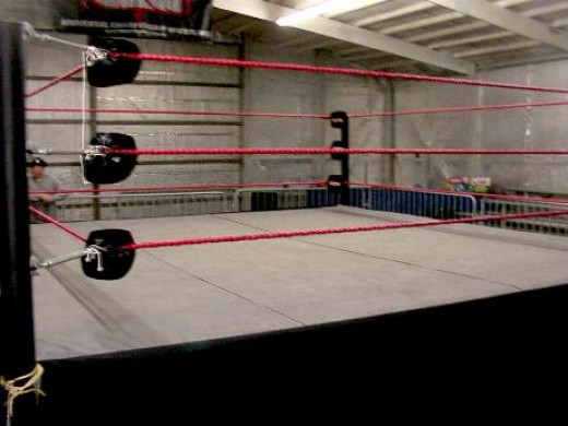 "Boxing rings can be made with a few tools, common sense and a little elbow grease. Next thing you know you have got the so- called ""squared circle""."