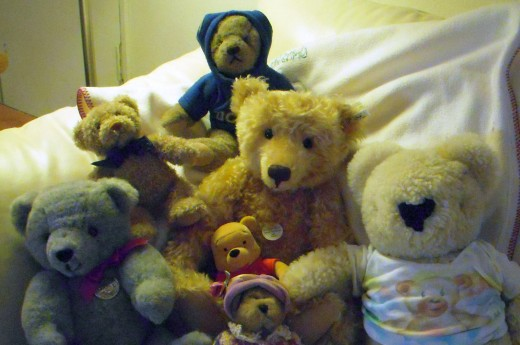 Family photo. Pictured from L to R: Teddy, Teddy, Teddy, Teddy, Pooh, Teddy and Teddy.