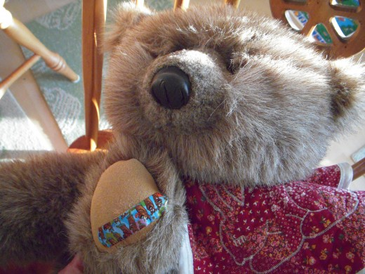 Teddy needs a foot repair after a nasty run-in with a thorn.