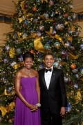 White House Christmas Trees: Special Themes Selected by the First Lady